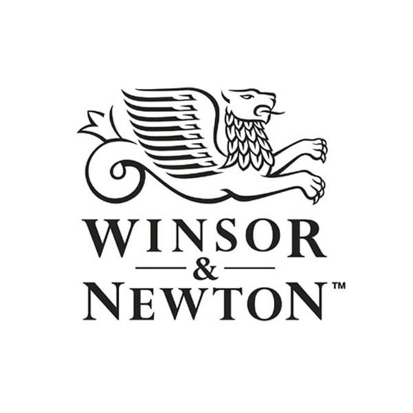 Acuarela Professional Winsor&Newton